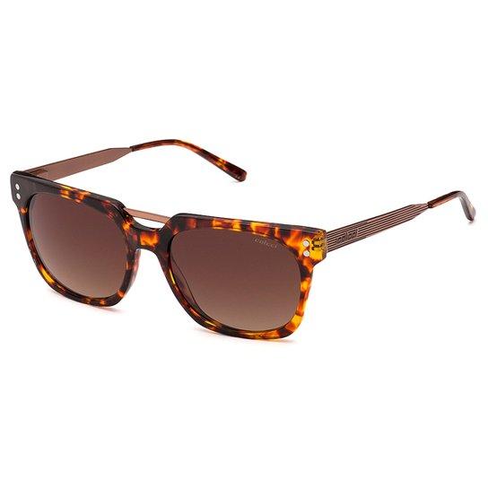 04aaa21949862 Óculos de Sol Colcci 5024 Feminino - Compre Agora   Zattini
