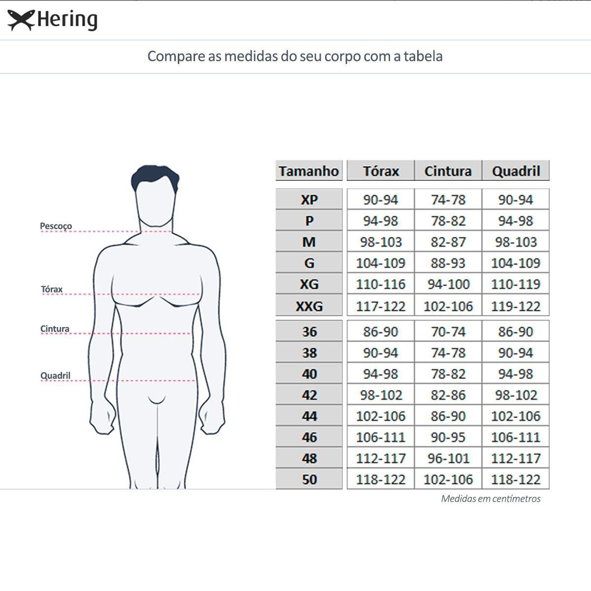 Camiseta Hering Básica Manga Longa Decote V Masculina - Preto