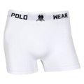Kit Cueca Boxer Polo Wear 12 Peças