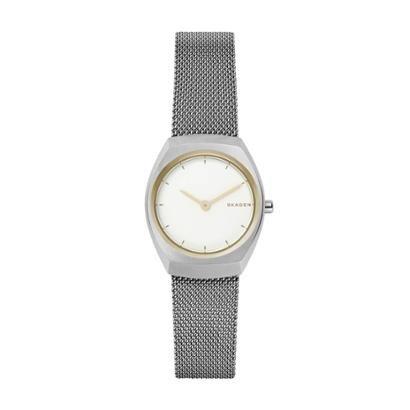 Relógio Skagen Asta  Feminino-Feminino